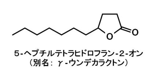 γ-ウンデカラクトン.jpg